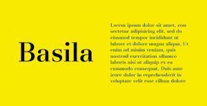 basila-serif-font