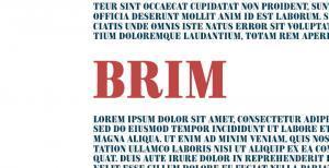 brim-serif-font