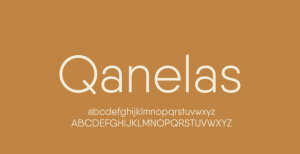 A modern font with 20 styles
