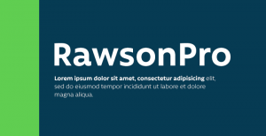 Rawson: a sans-serif font that comes in normal, Alt and Pro versions