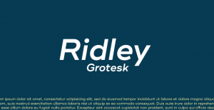 Ridley Grotesk: Another great font from Radomir Tinkov