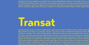 Transat: A sans-srif with a retro gothic touch