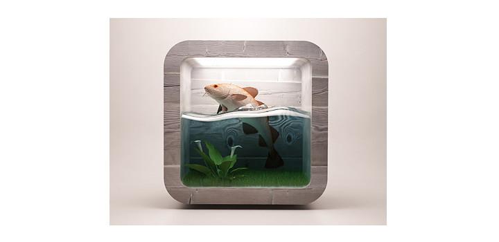 Fish Icon Design
