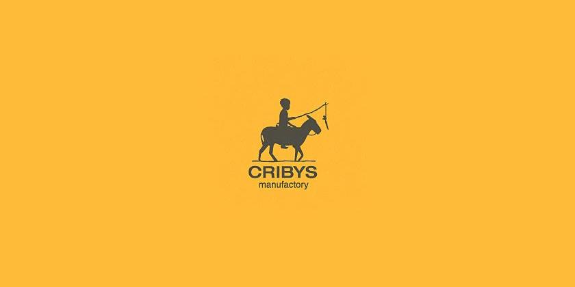 Donkey Logo Design